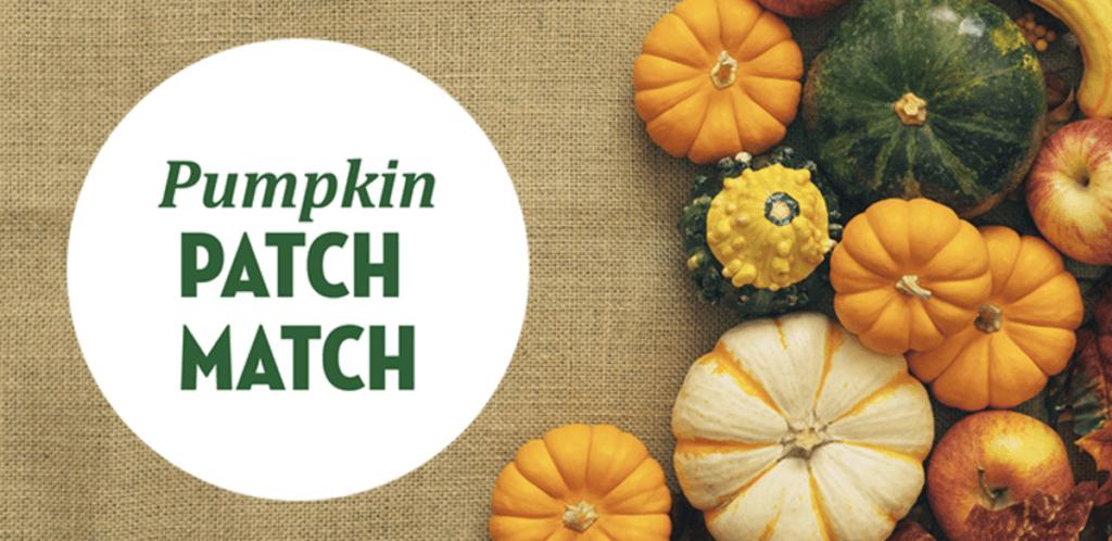 Tropicana's Pumpkin Patch Match promo